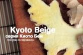 Посуда из керамики :: серия Kyoto Beige
